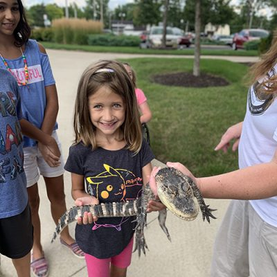 A young girl holds a baby alligator